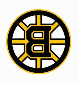 Boston Bruins NHL Hockey Full Color Logo Sports Decal Sticke